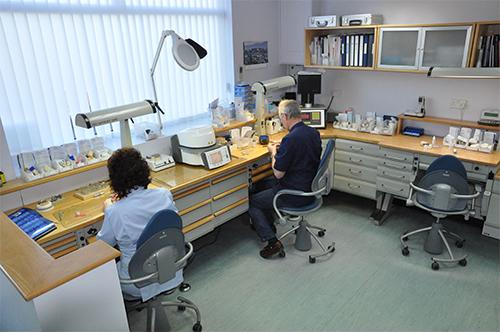 Wade Dental Laboratory Interior